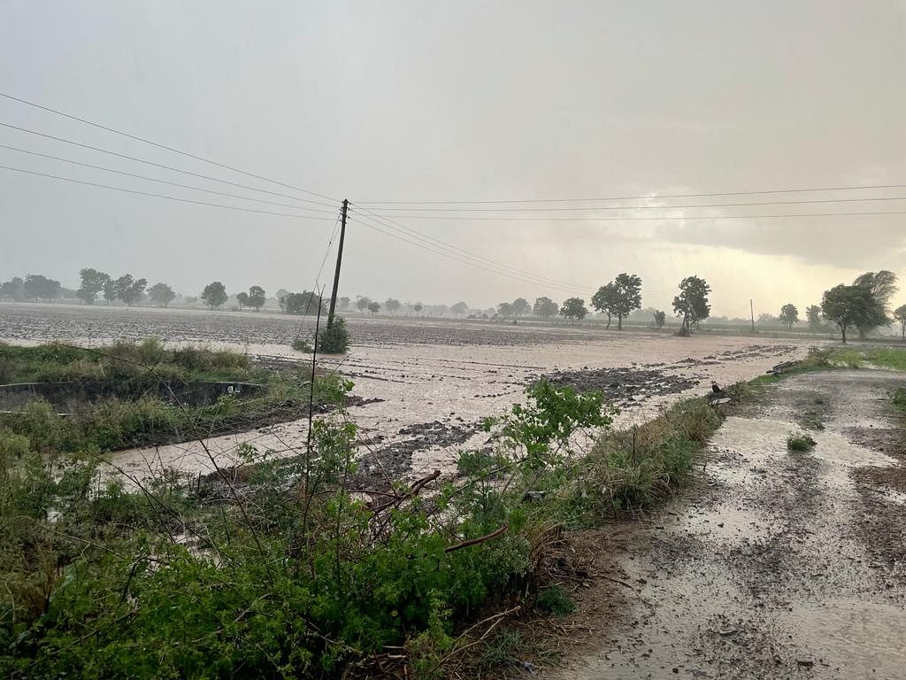 Video : जिरायती टापूत तासभर जोरदार पाऊस