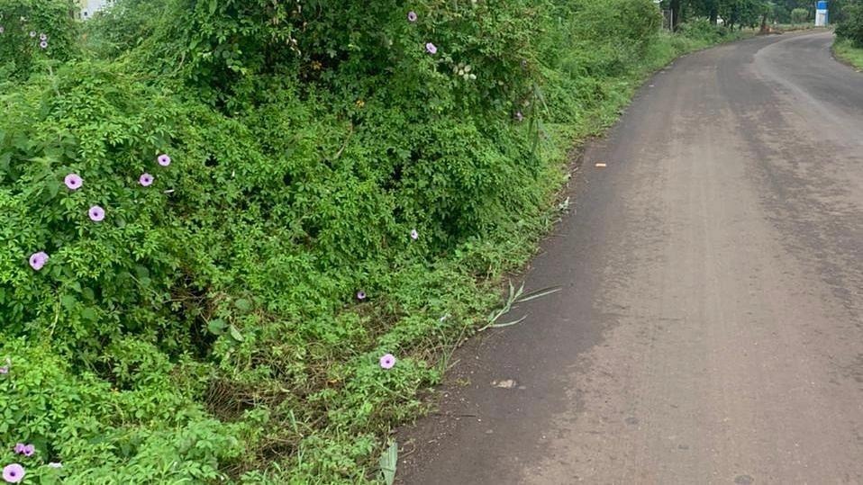 Bhagur-Pandhurli road posing danger to motorists