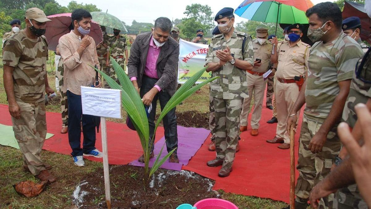 Tree plantation drive held