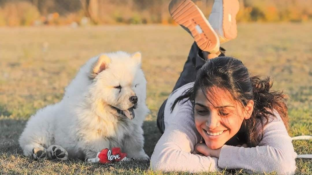 Pets - The natural stress busters