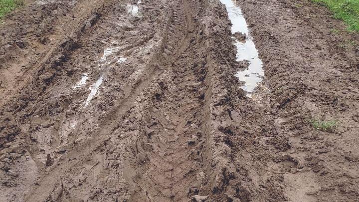 पाचेगाव-कारवाडी रस्ता बनला मृत्यूचा सापळा