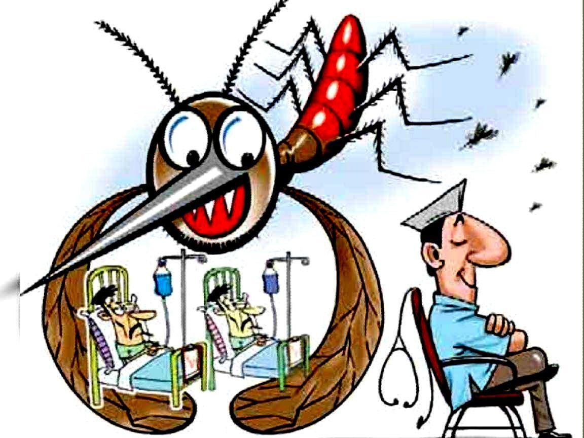 वरणगांवात डेग्यूंच्या आजाराची लक्षणे