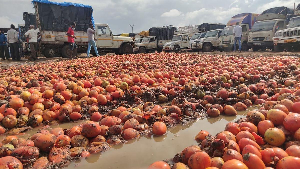 रविवार 'शब्दगंध' : कांद्याचा वांदा, टोमॅटोचा चिखल