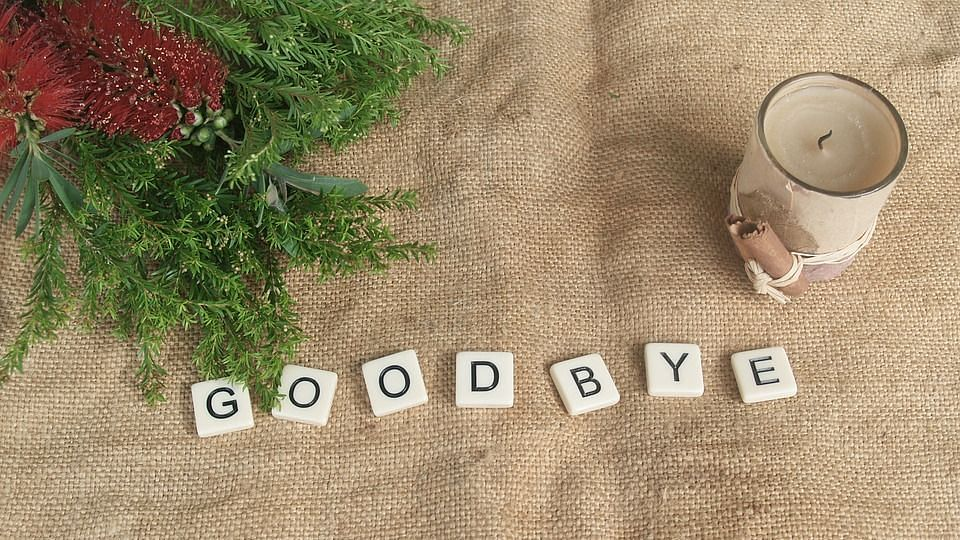 Common Ways to Say Goodbye in English