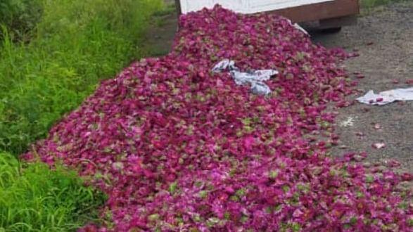 बाजारभाव नसल्याने फुले रस्त्यावर फेकण्याची शेतकर्यांवर वेळ