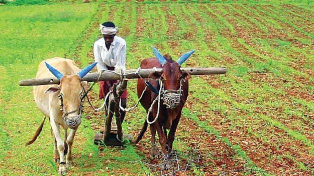 शेतकर्यांची उमेद जागवणारा उपक्रम!