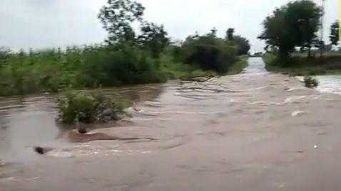 Video : नांदगाव-मालेगाव रस्त्यावरील पूल वाहून गेला