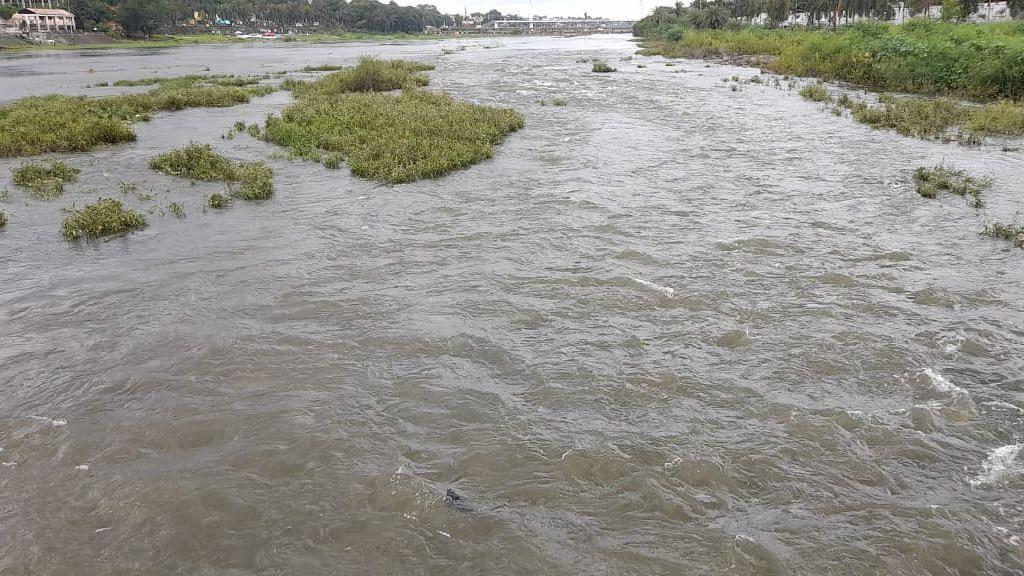 अक्कलपाडा प्रकल्पातून पाण्याचा विसर्ग, पांझरा नदीला पूर येणार