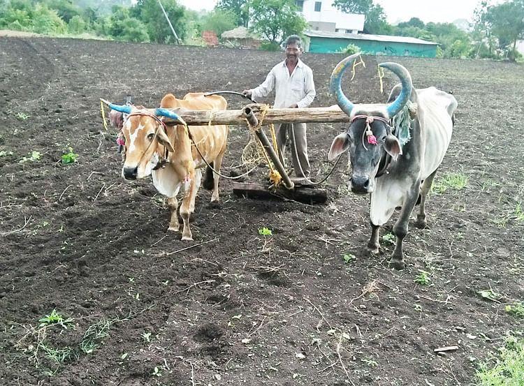शेतकरी कर्जमाफीची पहिली यादी जाहीर; नाशिक जिल्ह्यातील 'ही' दोन गावे ठरणार पहिले लाभार्थी