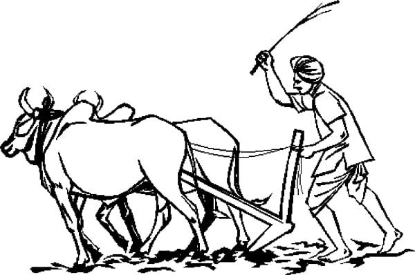कर्जमाफीचे 2334 कोटी शेतकर्यांच्या खात्यात