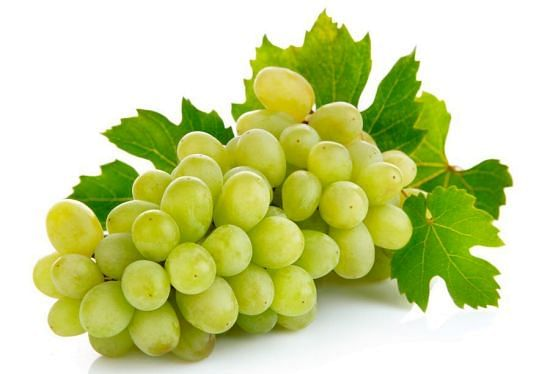 Grape production to be declined this year