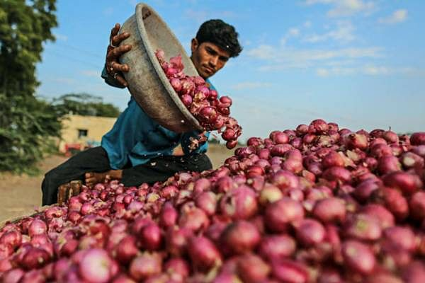 Onion farmers suspend auction, stage agitation against export ban
