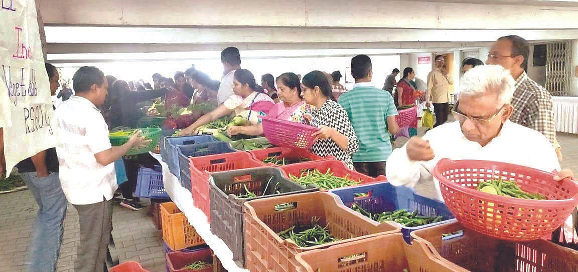 Nashikites to get taste of wild  veggies