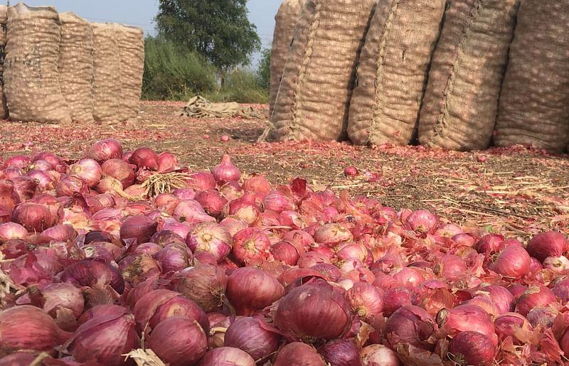 राहाता बाजार समितीत 16 हजार गोणी कांद्याची आवक