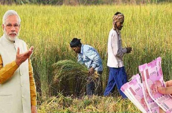 वर्षभरानंतरही 1 लाख 77 हजार शेतकरी 'पीएम किसान'च्या लाभापासून वंचित