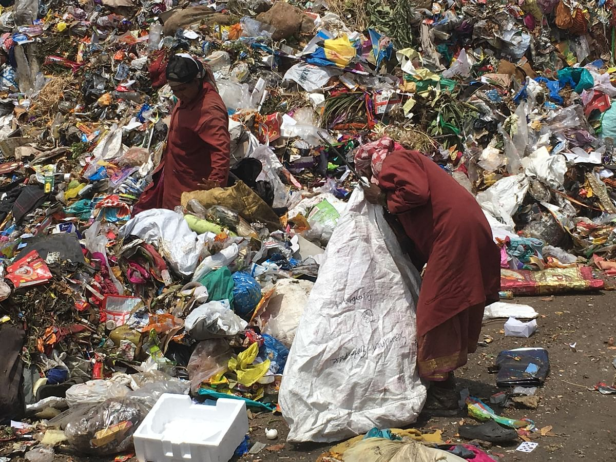 कचरावेचक महिलांचा स्वच्छतेत 'खारीचा वाटा'; ५० टक्के कचऱ्याचे रिसायकल