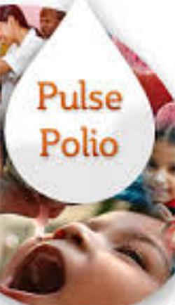 १९ जानेवारीला पल्स पोलिओ लसीकरण मोहीम