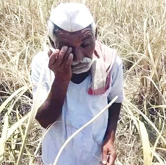 15,000 farmers in state given loan waiver : 706 farmers in district to get loan waiver
