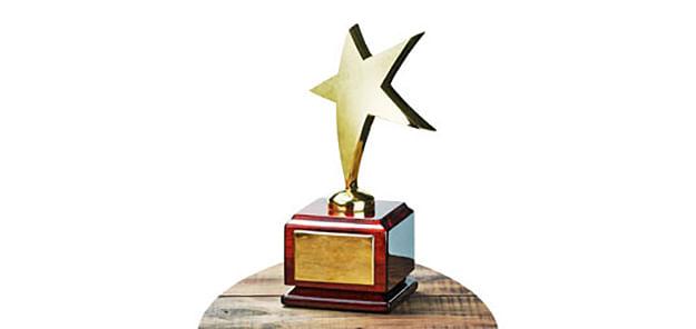 गीताई फाऊंडेशनतर्फे भांडवलकर यांना पुरस्कार