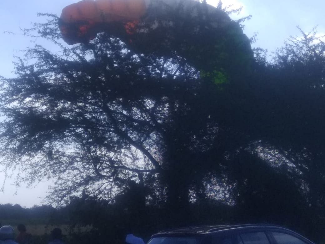 नाशिक : तीन जवानांचे पॅराशूट निकामी; एक जवान बाभळीच्या झाडांत अडकला, शेतकऱ्यांकडून मदत