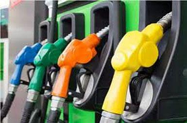 पेट्रोल, डिझेल का वाढत आहे, पेट्रोलियम मंत्र्यांनी दिले उत्तर...