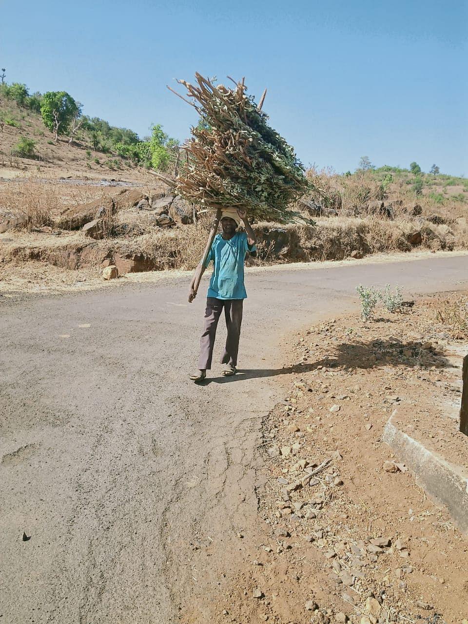 त्र्यंबकेश्वर : करोनाशी दोन हात करीत ग्रामीण भागात राब भाजणीस प्रारंभ
