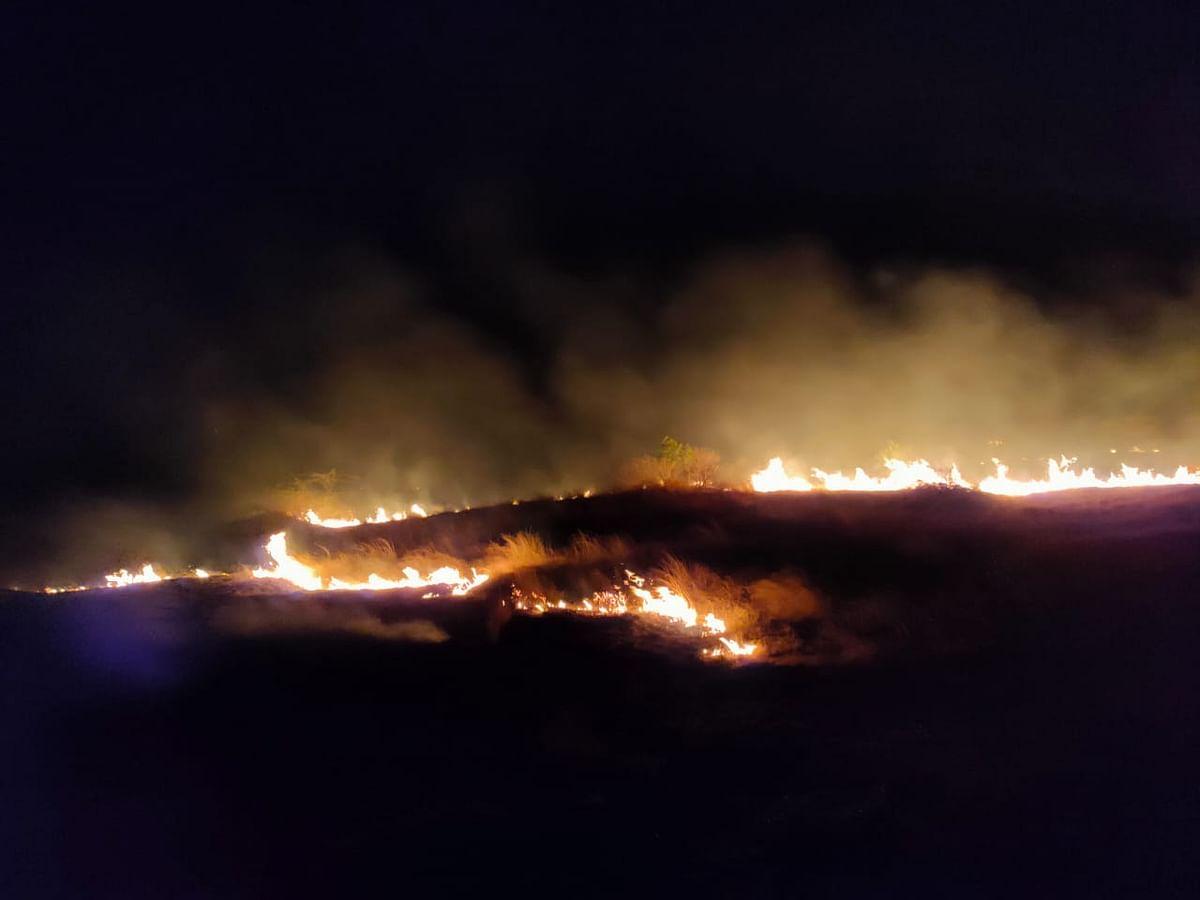 सिन्नर : खंबाळे येथील वनविभागाच्या क्षेत्रात आग; दहा हेक्टरवरील झाडे नष्ट