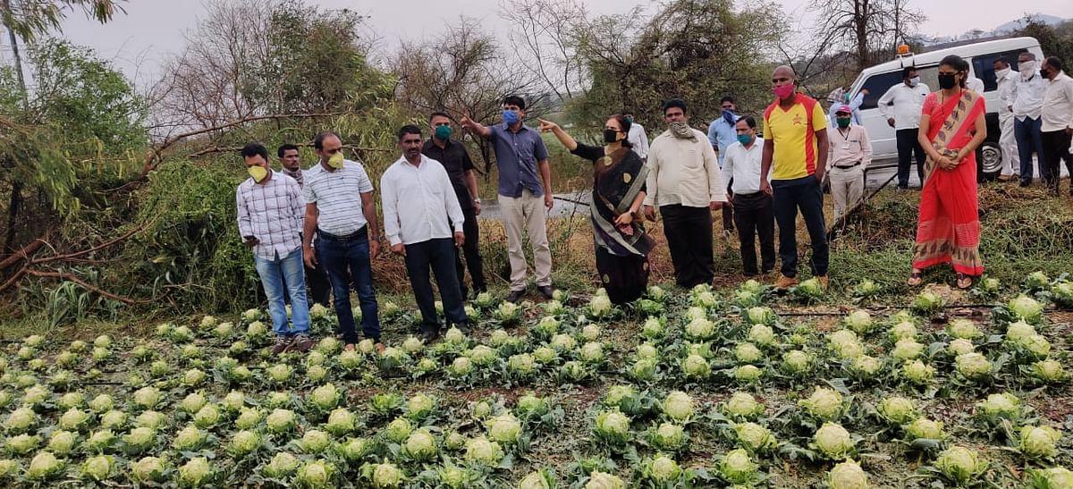 अवकाळी पावसाने नुकसान झालेल्या शेतकऱ्यांना सरकारने आर्थिक मदत करावी- खा.डॉ.भारती पवार