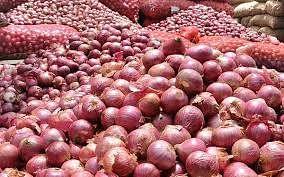 नेप्तीचा कांदा बाजार उद्यापासून सुरू