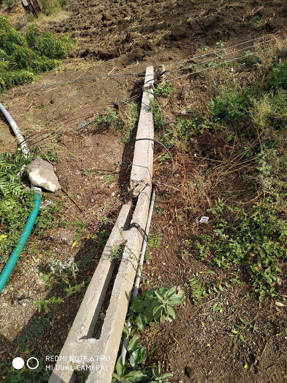 PhotoGallery : सिन्नर तालुक्याला निसर्गाचा तडाखा; २१.२० मिमी पावसाची नोंद