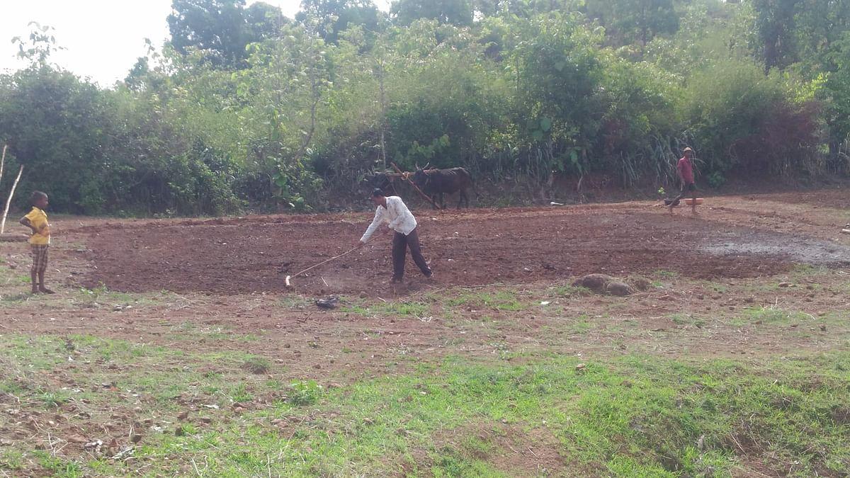 पेठ : जमीन मशागतीच्या कामांना वेग; पेरणीबाबत शेतकरी संभ्रमात