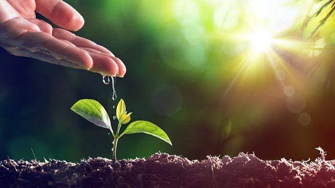Blog | जागतिक पर्यावरण दिन : निसर्ग आणि लॉकडाऊन