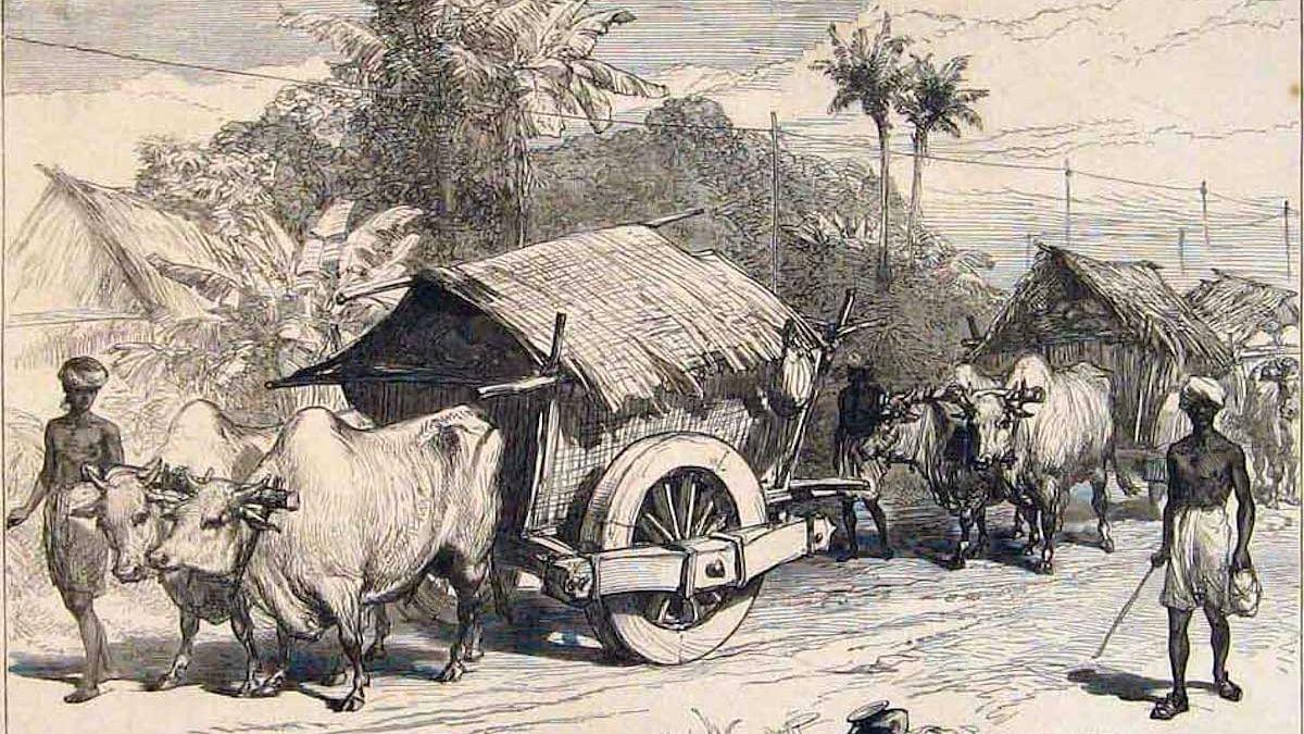 A Colonial British Surgeon's India Diary: Circa 1891