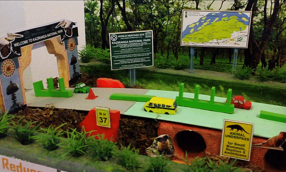 How these Assam students plan to save wildlife from road accidents