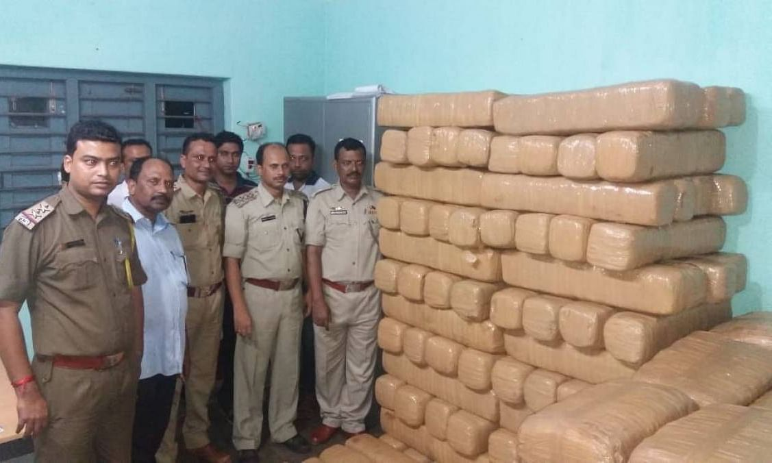 Tripura: 500-kg ganja worth Rs 25 lakh seized