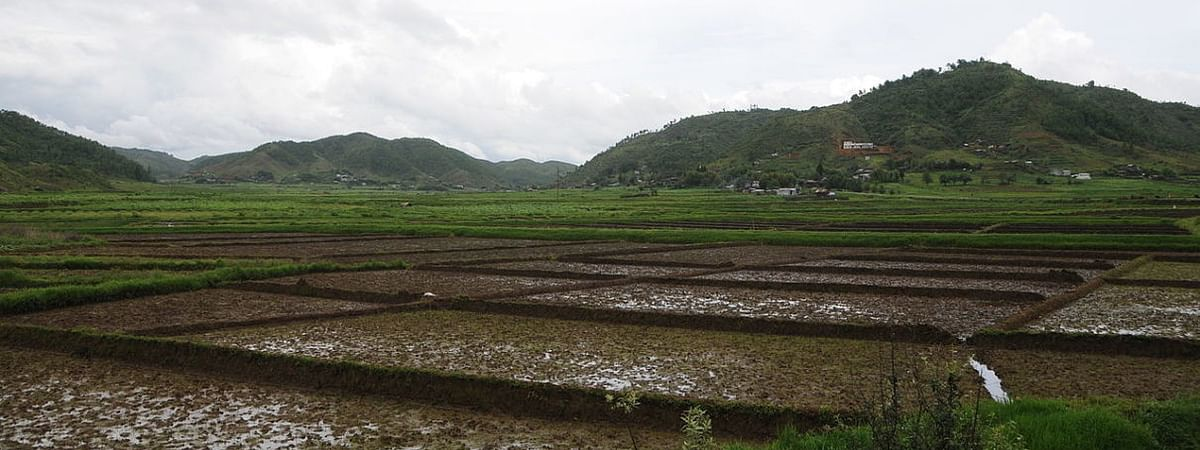 Agriculture in Meghalaya