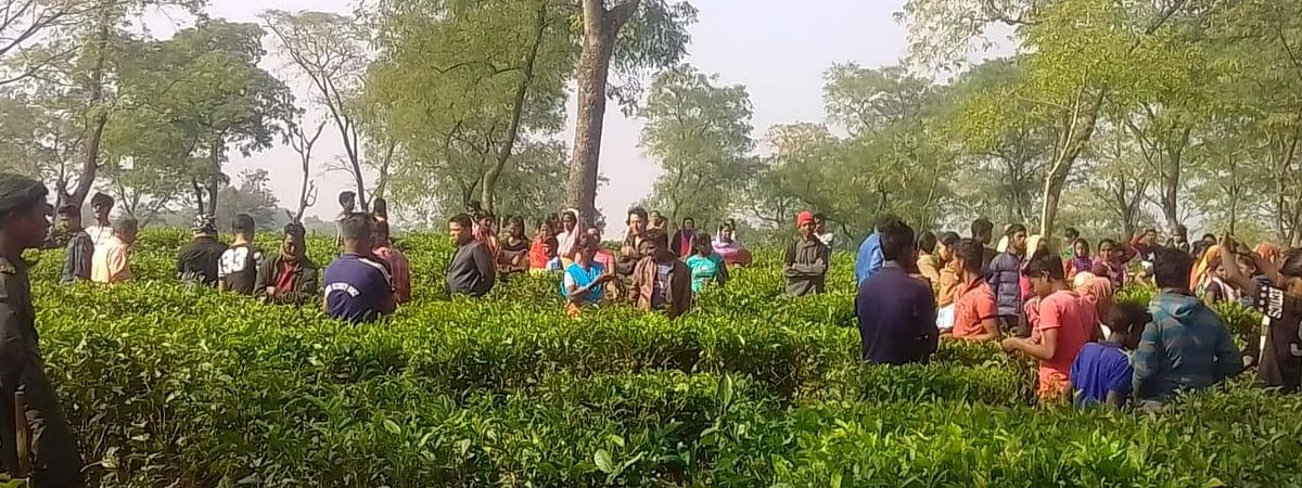 Hundreds of locals protested against the apathetic approach of the forest department towards resolving the increasing man-animal conflicts in the area
