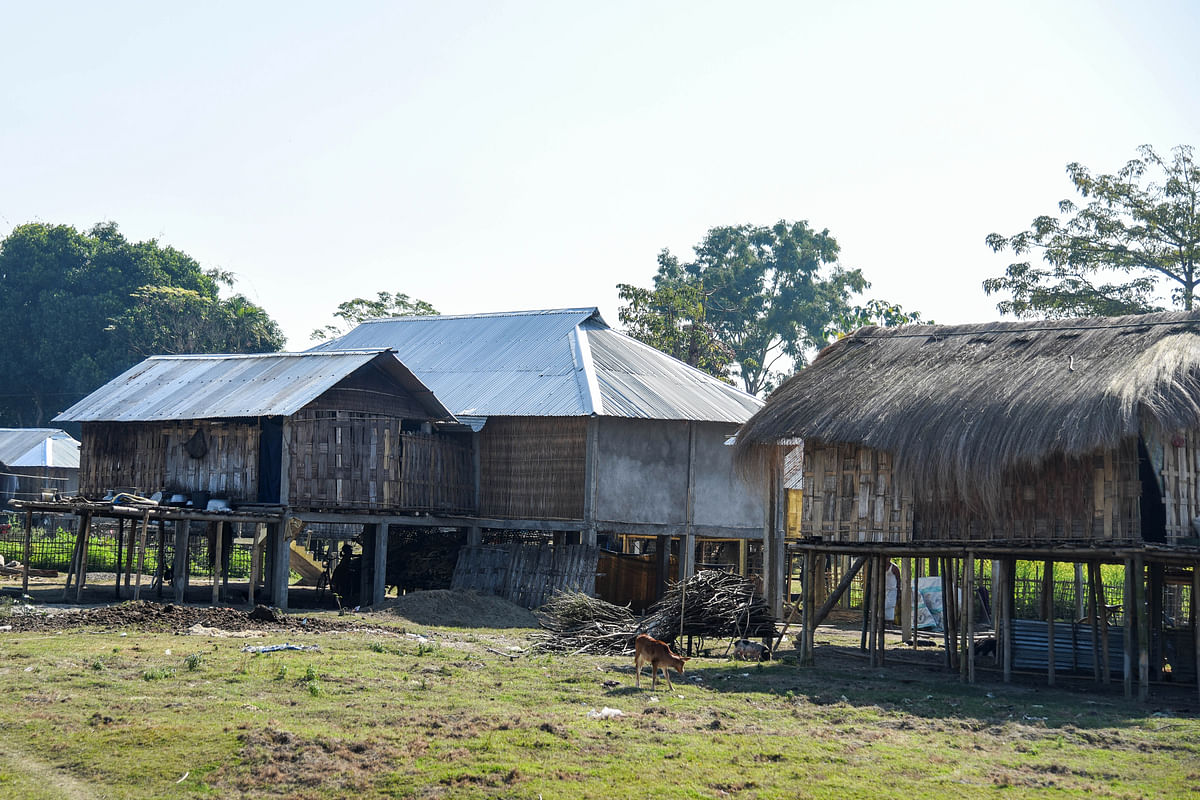These houses<i> </i>at Bamungaon village are attacked every year on more than one occasion by elephants from neighbouring Kaziranga National Park.