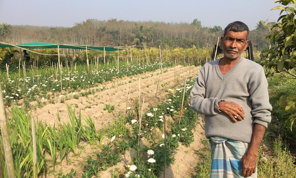 How these Tripura farmers are relishing the sweet smell of success
