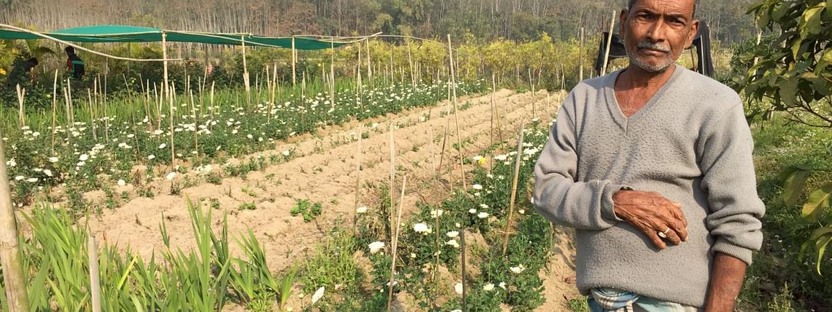 More than 250 families of Laxmibil village in Sepahijala district of Tripura are undertaking floriculture as a means of sustainable livelihood