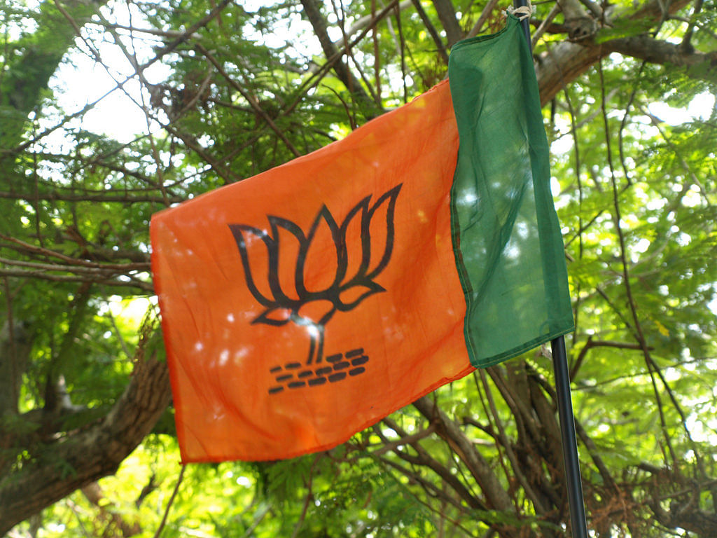 Lok Sabha polls 2019: BJP names 2 contestants for NE in 3rd list