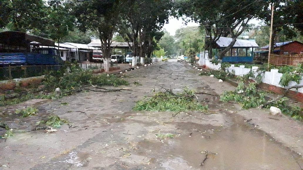 Uprooted trees block the road at Police Training School, Chumoukedima in Dimapur