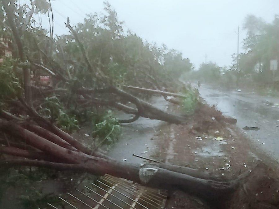 Cyclone Fani claims 2 lives in Odisha, causes extensive damage
