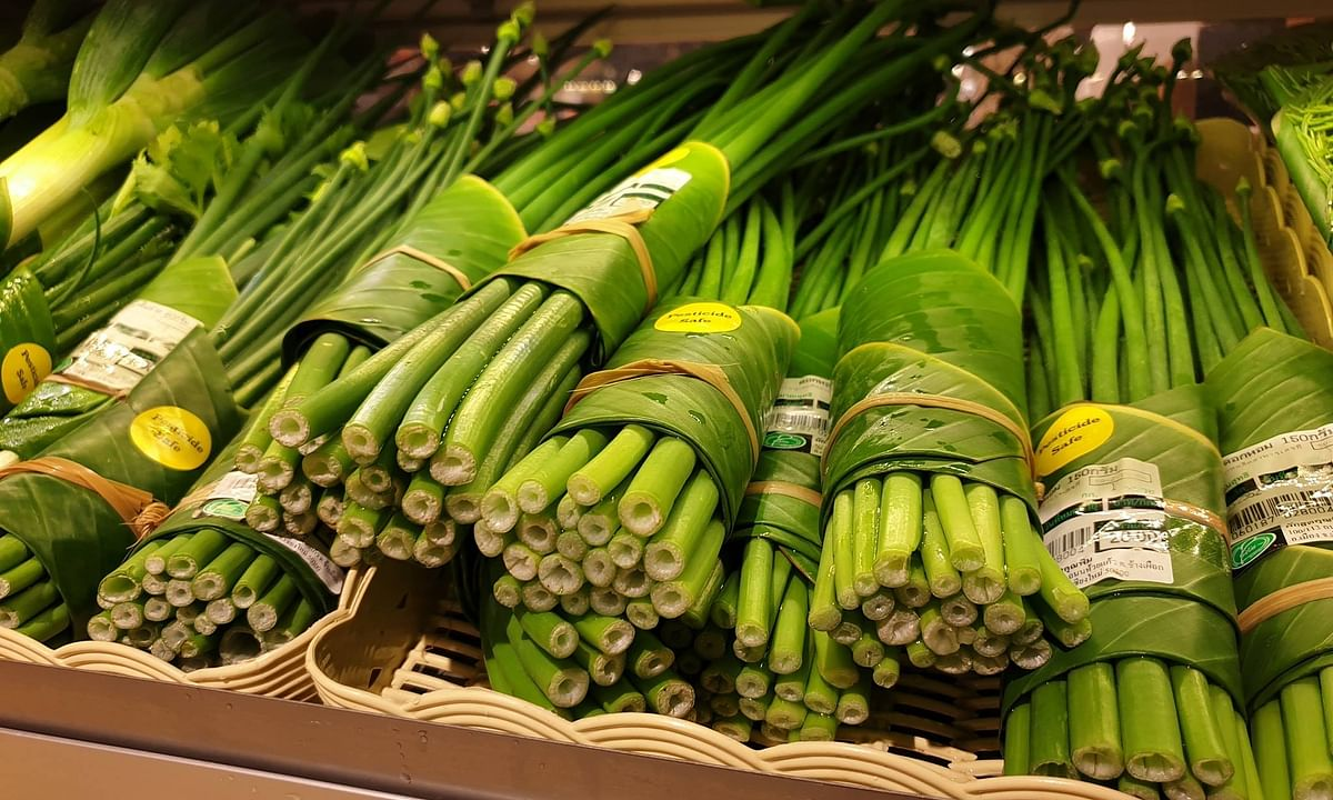 What  NE can learn from this Thai supermarket's green initiative