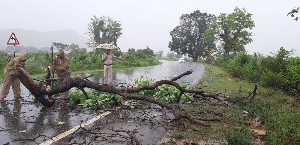 Cyclone Fani, which made landfall near Puri, Odhisha on Friday morning, has claimed at least nine lives till now