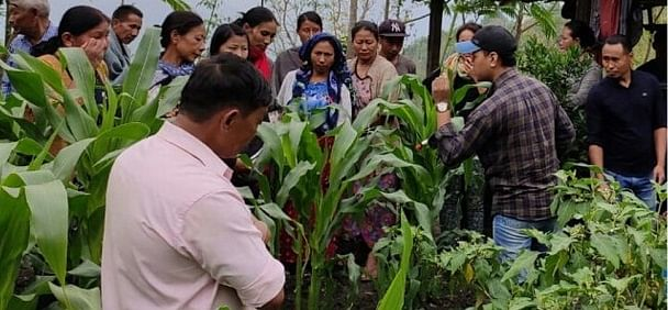 Agriculture department officials giving a demonstration to farmers about fall armyworms in Chiephobozou, Kohima