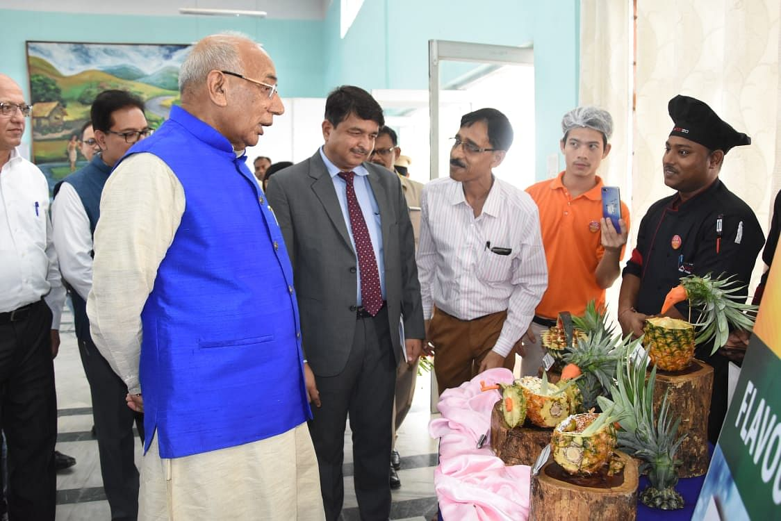 Tripura governor Prof Kaptan Singh Solanki (in blue jacket) inspecting 'queen' pineapples at the fourth edition of the 'pineapple festival-cum-exhibition' in Agartala on Friday
