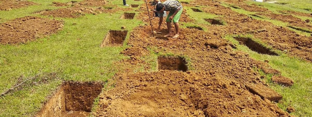 A massive plantation drive has been initiated in Meghalaya on World Environment Day on June 5