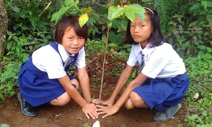 In PICS: Week-long 'World Environment Day' celebrations in Manipur