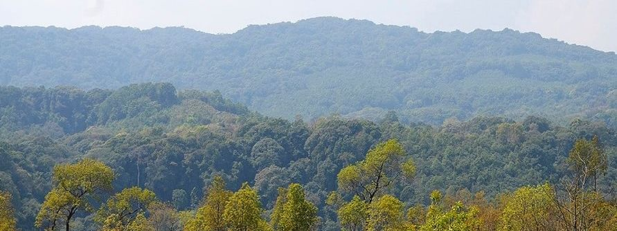 The vast stretches of wilderness in Dima Hasao district of Assam